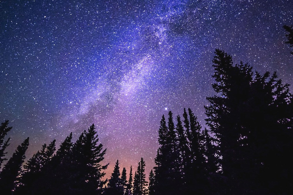 milky way, sacred fire, forest
